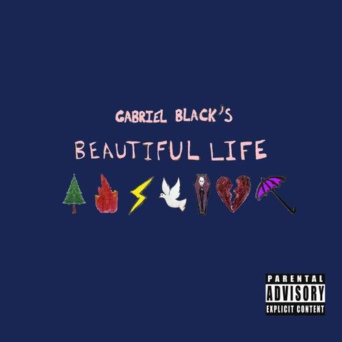 Beautiful Life by gabriel black