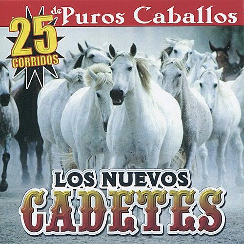 25 Corridos De Puros Caballos by Los Nuevos Cadetes