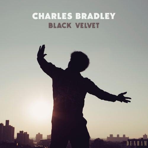 Black Velvet by Charles Bradley