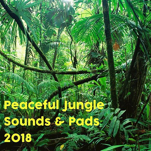 Relaxing Forest Sounds & Synth Pads by Nature Sounds (1)