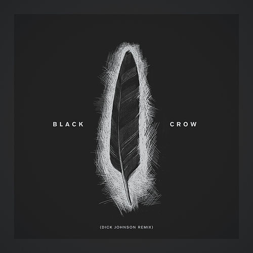Black Crow (Dick Johnson Remix) di Louis Baker