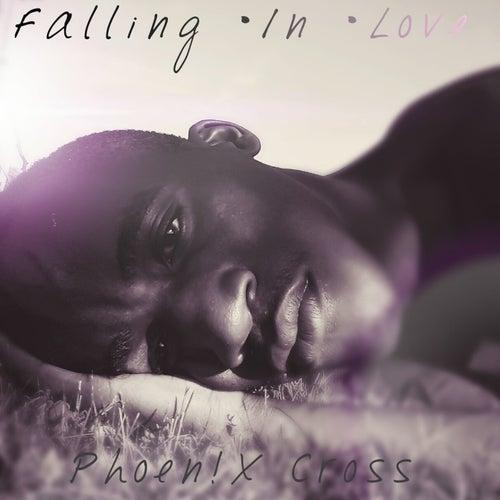 Falling in Love by Phoen!X Cross