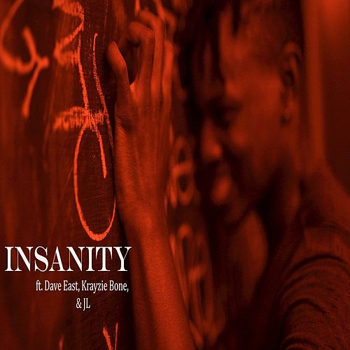Insanity by Leeson Bryce