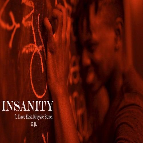 Insanity de Leeson Bryce