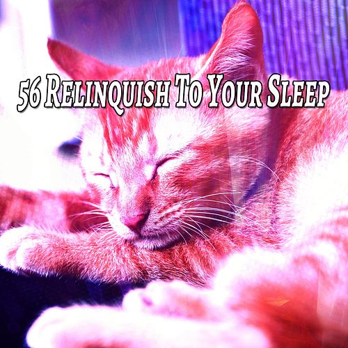 56 Relinquish To Your Sleep von Best Relaxing SPA Music