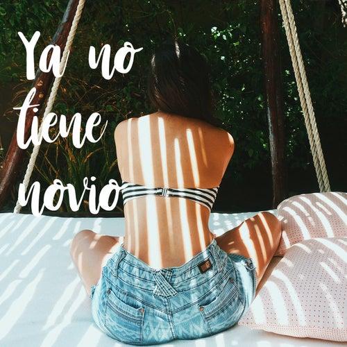 Ya no tiene novio de Laura Naranjo