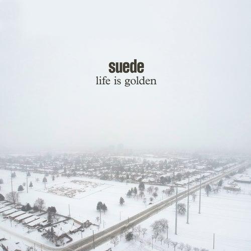 Life is Golden de Suede