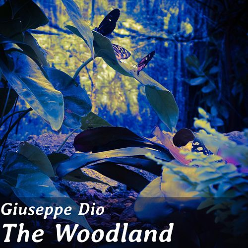 The Woodland by Giuseppe Dio