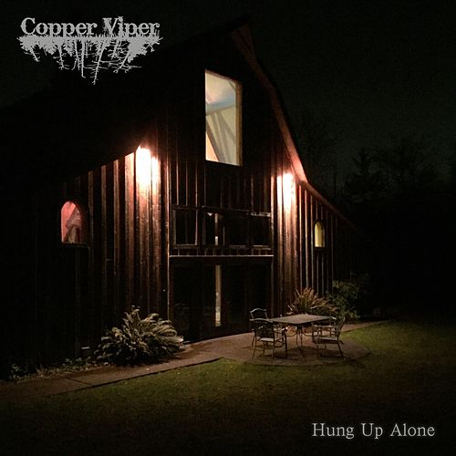 Hung Up Alone by Copper Viper