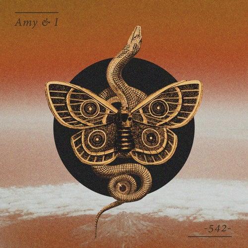 542 de Amy
