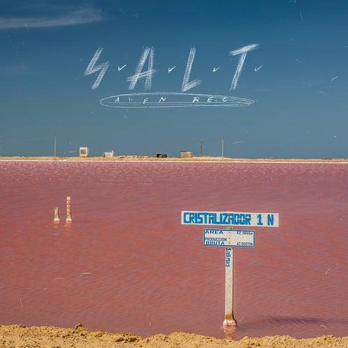 S.a.L.T (Intro) de Avenrec