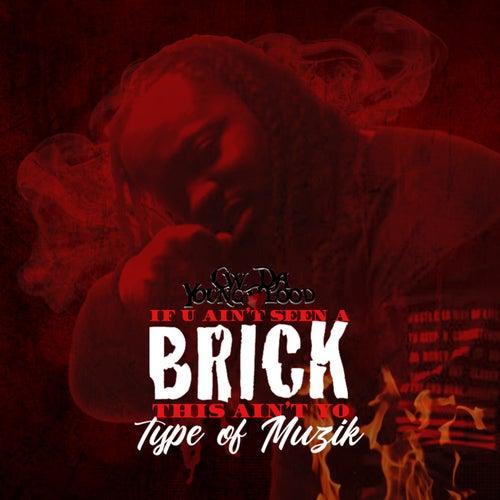 If U Ain't Seen a Brick This Ain't Yo Type of Muzik von CW Da Youngblood
