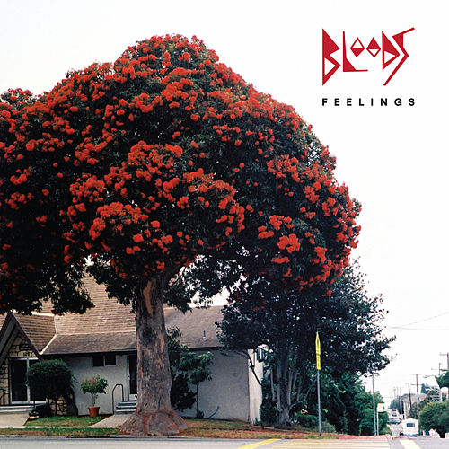 Feelings by Bloods
