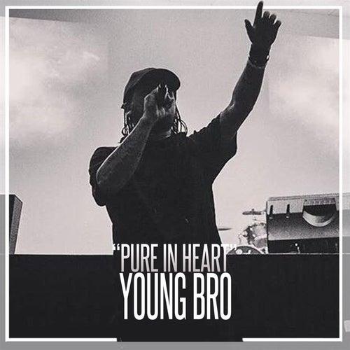 Pure in Heart de Young Bro