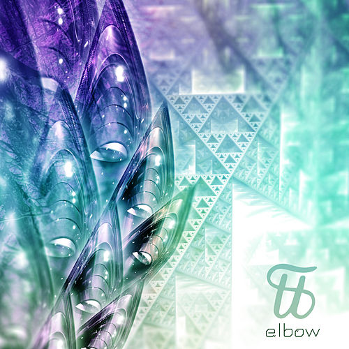 Shaids by Elbow