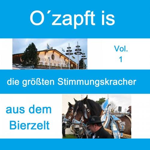 Top 30: O' zapft is - Die größten Stimmungskracher aus dem Bierzelt, Vol. 1 de Various Artists