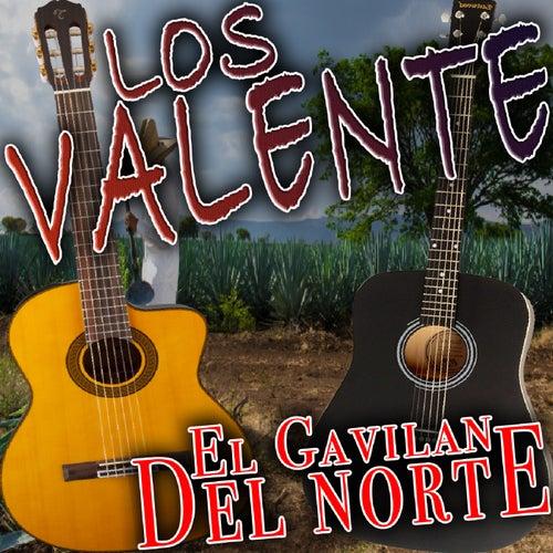 El Gavilan Del Norte by Valente