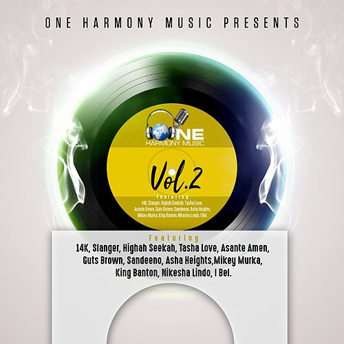 One Harmony Music Presents Volume 2 by Various Artists