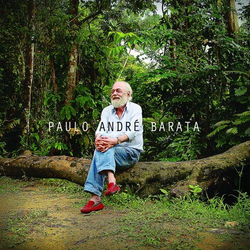 Paulo André Barata von Paulo André Barata
