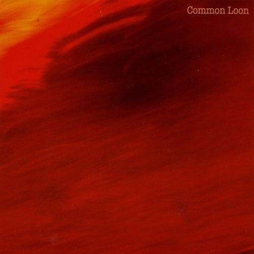 The Long Dream Of Birds de Common Loon