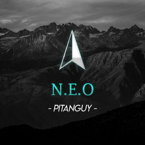 N. E. O Pitanguy by Original Norte