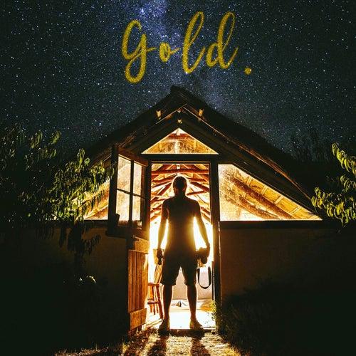 Gold von Jeremy Loops