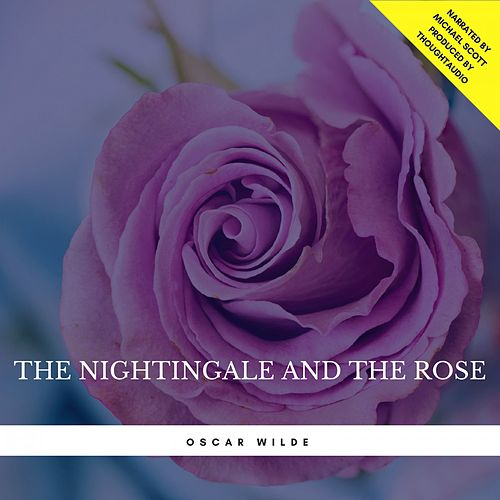 The Nightingale and the Rose von Oscar Wilde