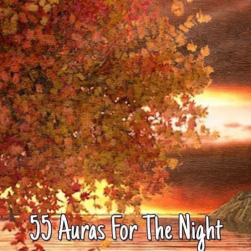 55 Auras For The Night von Best Relaxing SPA Music