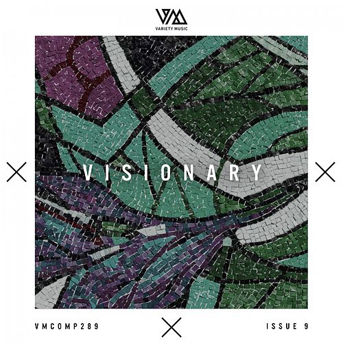 Variety Music Pres. Visionary Issue 9 de Various Artists