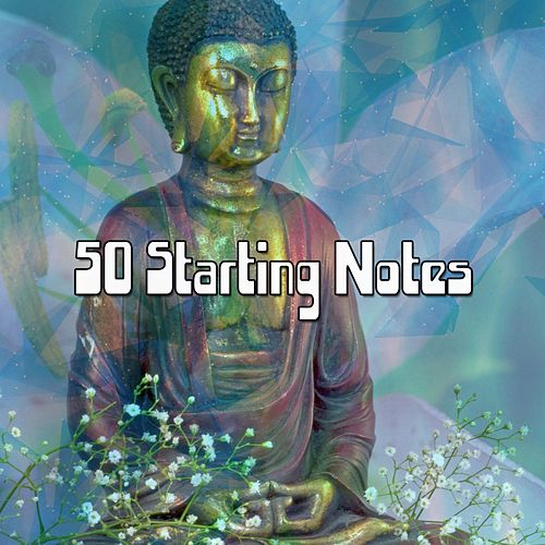 50 Starting Notes de Zen Meditate