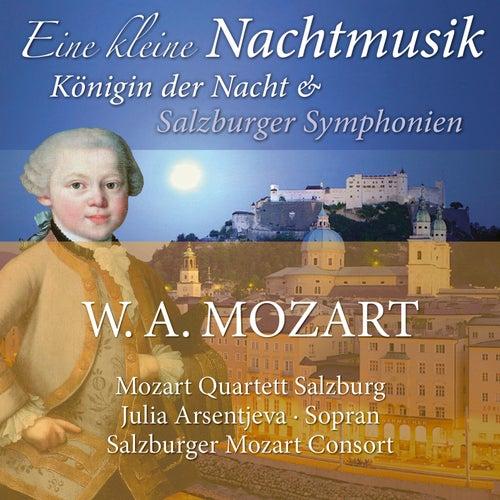 Mozart: Eine kleine Nachtmusik, Königin der Nacht & Salzburger Symphonien von Various Artists