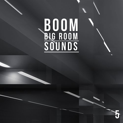 Boom, Vol. 5 - Big Room Sounds de Various Artists