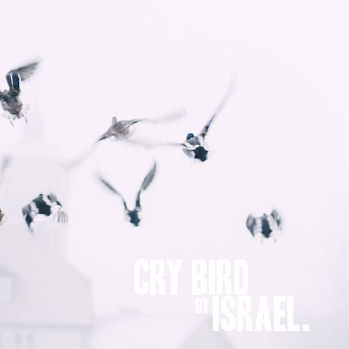 Cry Bird by Israel Houghton