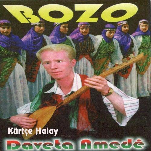 Kürtçe Halay / Daveta Amedé de Bozo