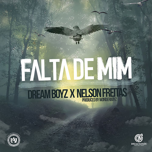 Falta De Mim by Dream Boyz