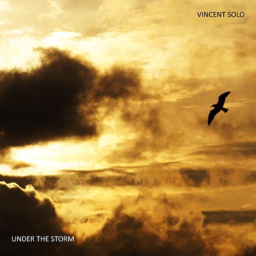 Under the Storm by Vincent Solo