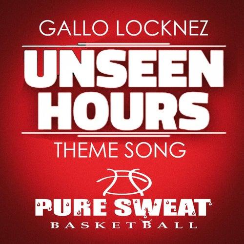 Unseen Hours by Gallo Locknez