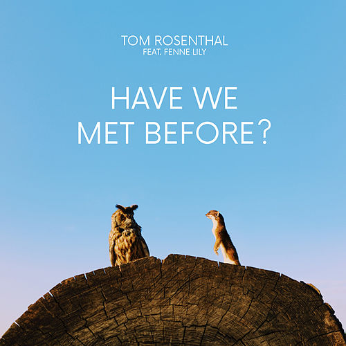 Have We Met Before? von Tom Rosenthal
