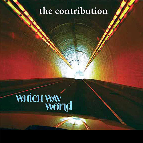 Which Way World by The Contribution