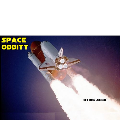Space Oddity by Dying Seed