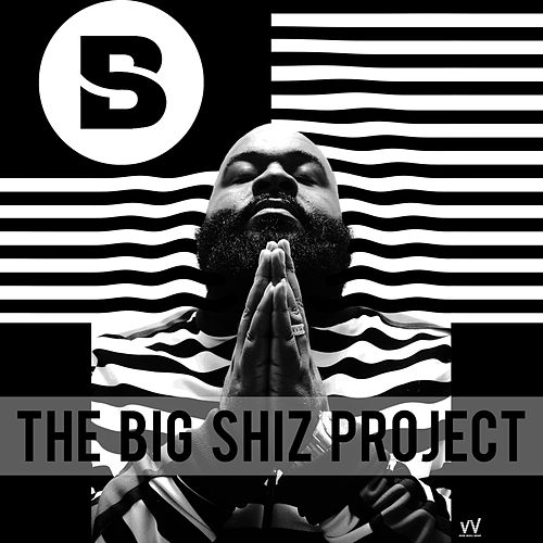 The Big Shiz Project de Big Shiz