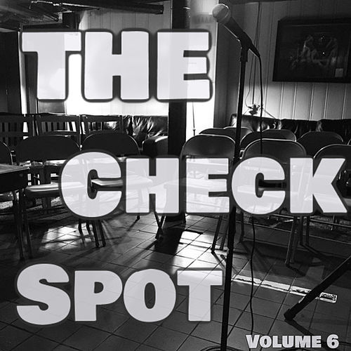 The Check Spot, Vol. 6 by Various Artists