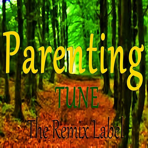 Parenting Track (1st Class Vibrant Deephouse Mix) de Paduraru