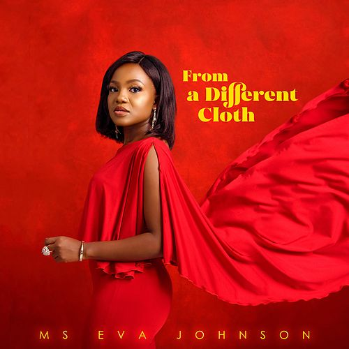 From a Different Cloth by Ms Eva Johnson