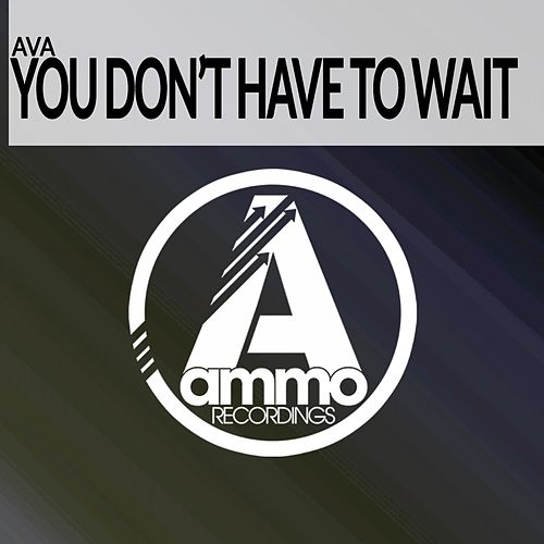 You Don't Have to Wait (Original Mix) di AVA