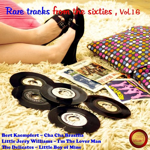 Rare Tracks from the Sixties, Vol. 16 by Various Artists