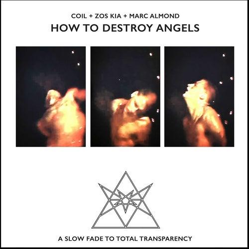 How to Destroy Angels de Coil
