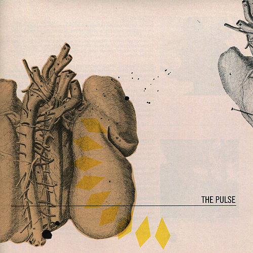 The Pulse by Pulse