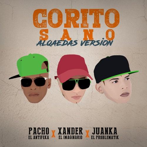 Corito Sano (alqaedas) by Pacho El Antifeka