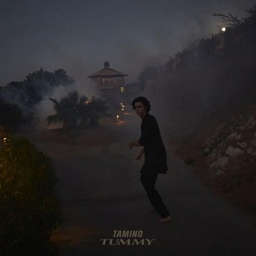 Tummy by Tamino